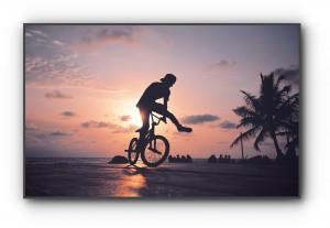 野村周平 BMX