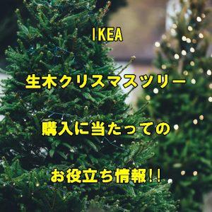 IKEAのクリスマスツリー情報!